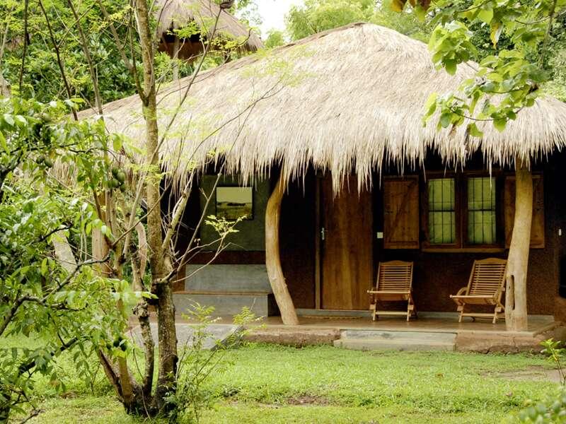 Die ersten vier Nächte unserer Rundreise durch Sri Lanka wohnen wir naturnah im Grünen in den Bungalows des Hotels The Other Corner in Habarana.