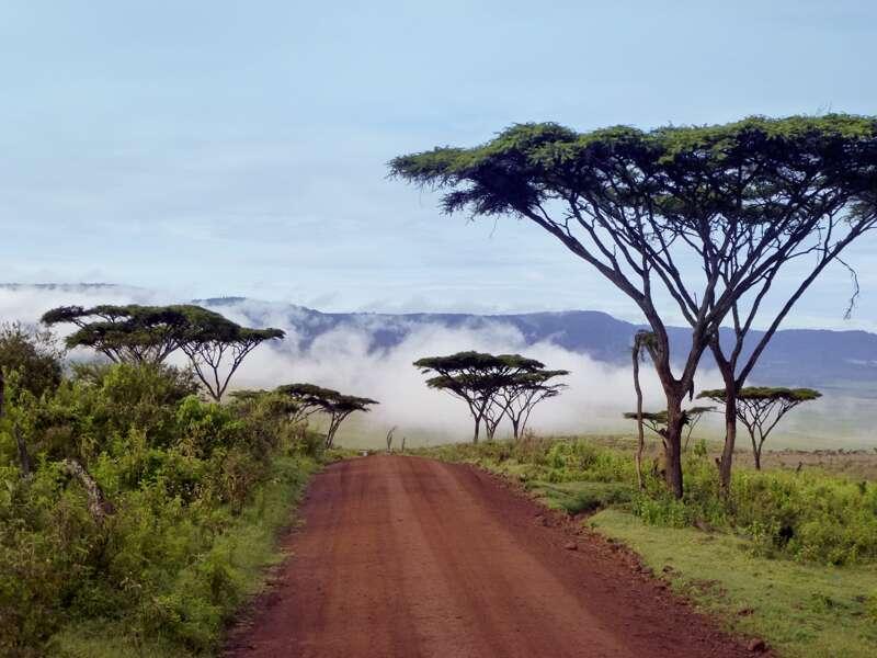 Auf unserer Rundreise durch Tansania führt unser 'Weg durch die grandiose Landschaftskulisse von Ostafrika.
