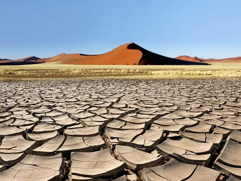 Bis zu 300 m ragen die Dünen rund um die riesige Lehmpfanne Sossusvlei orangerot in den blauen Himmel. Auf unserer Rundreise durch Namibia bietet sich die Gelegenheit, einen der Sandriesen zu besteigen.