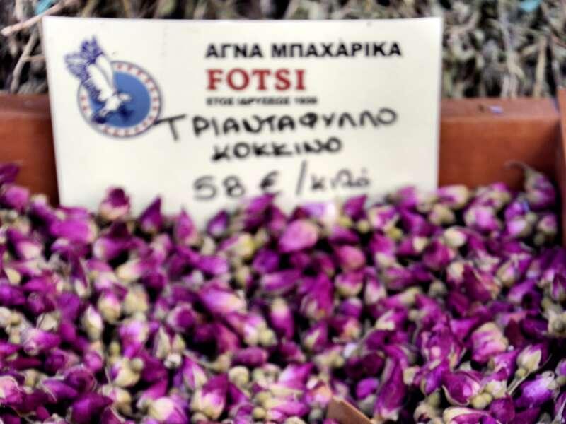 Auf unserer Rundreise druch Griechenland erfreuen wir uns an der Blütenpracht auf dem Markt.
