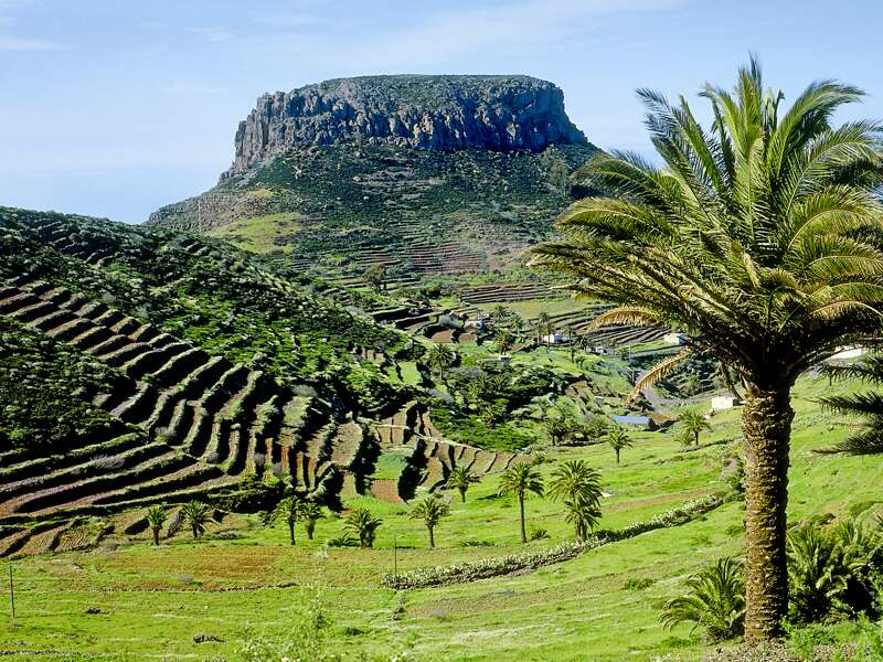 Auf smart&small Rundreise zu den Kanarischen Inseln durchqueren wir den fruchtbaren Norden von La Gomera mit seinen grünen, steil angelegten Terrassenfeldern und gigantischen Ausblicken auf den Atlantik,