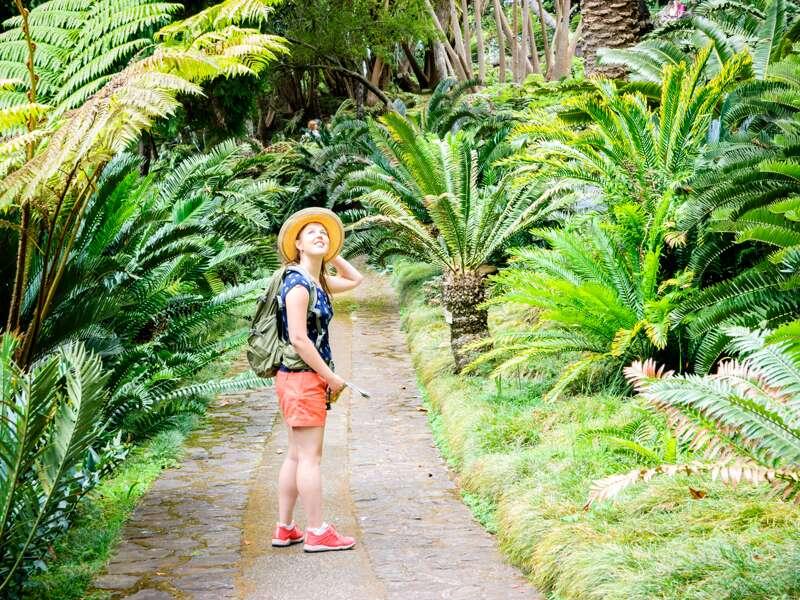 Auf unserer Reise nach Madeira in kleiner Gruppe spazieren wir durch die einzigartige Landschaft und bestaunen Baumfarne.