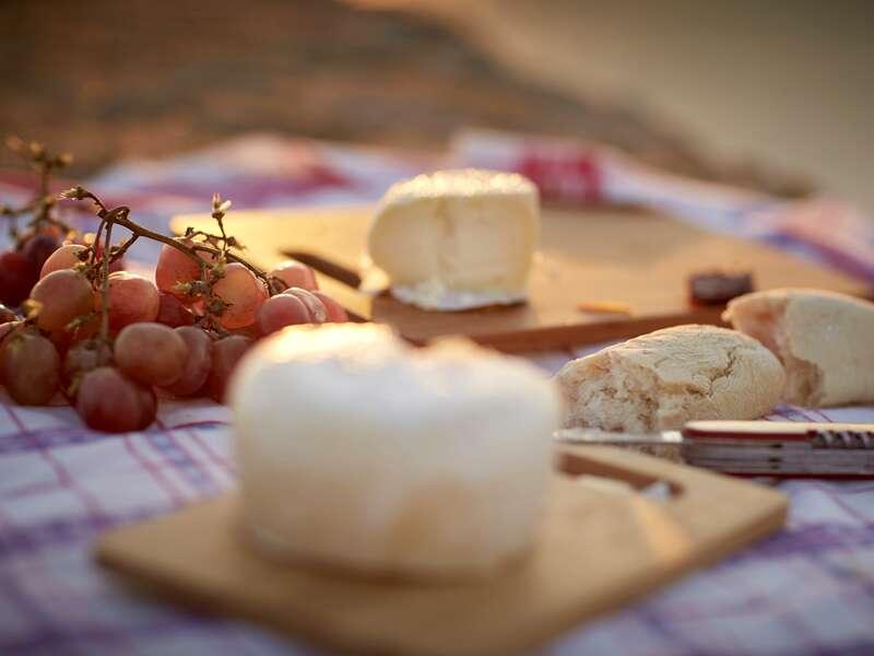 Unser Picknick auf Madeira mit Oliven, Schafskäse und heimischem Wein schmeckt im Schatten, begleitet vom Konzert der Zikaden, einfach göttlich! Eines der vielen schönen Erlebnisse auf unserer abwechslungsreichen Rundreise.