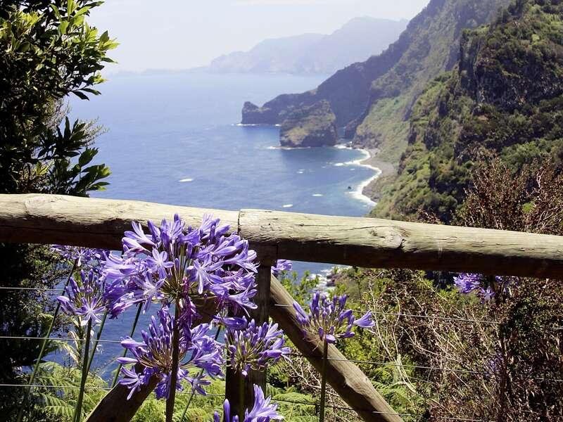 Auf unserer Reise nach Madeira werfen wir Blicke von Aussichtspunkten auf die spektakuläre Küste und fotografieren, was der Chip hergibt.
