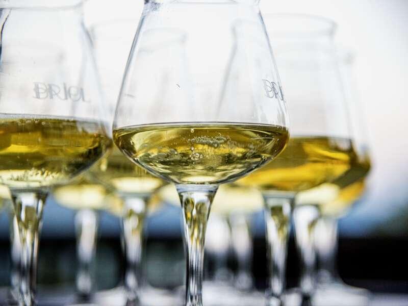 Stoßen Sie während des Silvesterabends Ihrer Studiosus Singlereise mit einem Glas Cava oder aber auch mit einem Glas spanischem Weißwein auf das neue Jahr an.