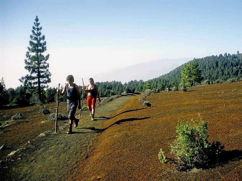 Die grüne Insel La Palma ist ein Wanderparadies, mit riesigem Krater, üppiger Vegetation und der Atlantikküste - la isla bonita!