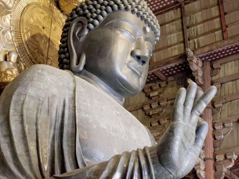 Unsere Studienreise überrascht uns gleich zu Beginn mit einem Besuch des Nara-Parks. Auf unserem Spaziergang begrüßen uns Sikahirsche mit höflicher Verneigung. Im Todai-Tempel (UNESCO-Welterbe) lächelt uns der größte Bronzebuddha der Welt zu.