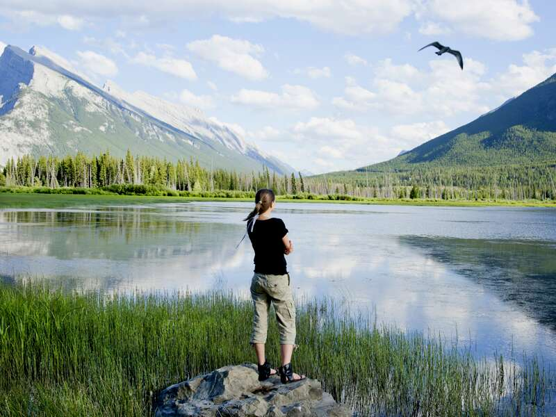 Zu Beginn unserer Studienreise durch Westkanada steuern wir die Rocky Mountains an. Über den Yellow Pass geht's hinüber nach British Columbia. Hier machen wir einem steinernen Monarchen unsere Aufwartung: seiner Majestät Mt. Robson, mit 3954 m höchster Berg der kanadischen Rockies.