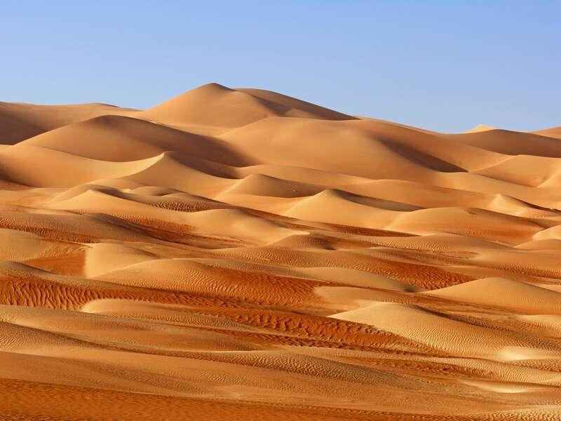 Auch zu den Wahabi Sands führt unsere Studienreise in den Oman. Die Dünen liegen wie ein wellenreiches Meer vor uns.