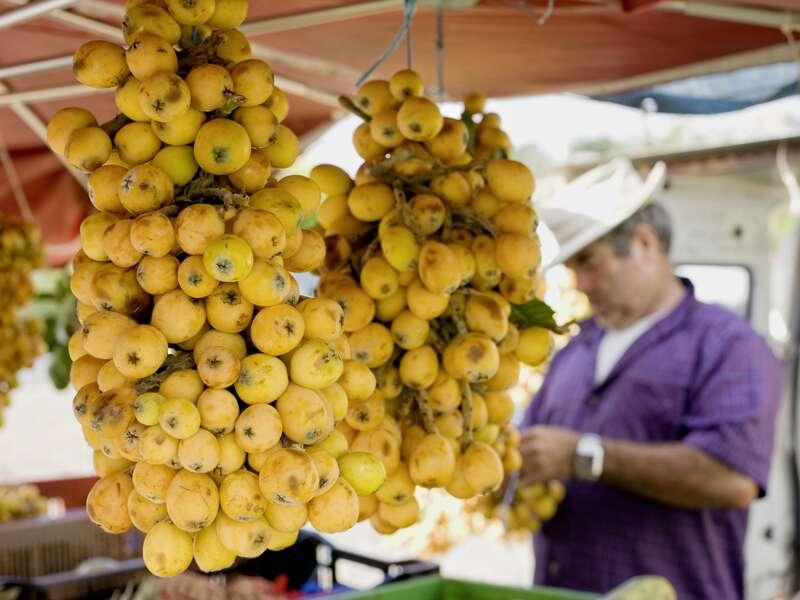 Auf einem Markt auf Réunion hängen Mispeln zum Verkauf