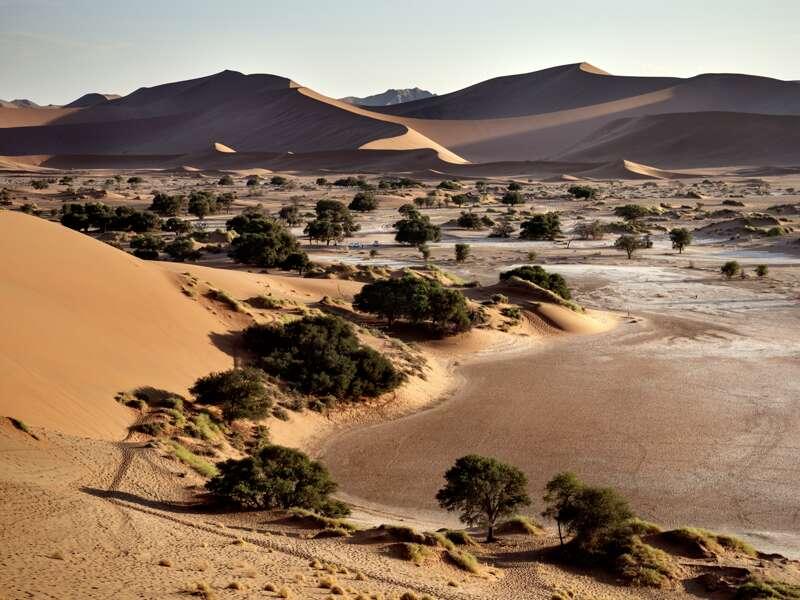 Auf unserer Natur-Studienreise Namibia-Botswana - Wunder der Natur bestaunen wir auch die spektakulären Sanddünen am Sossusvlei.