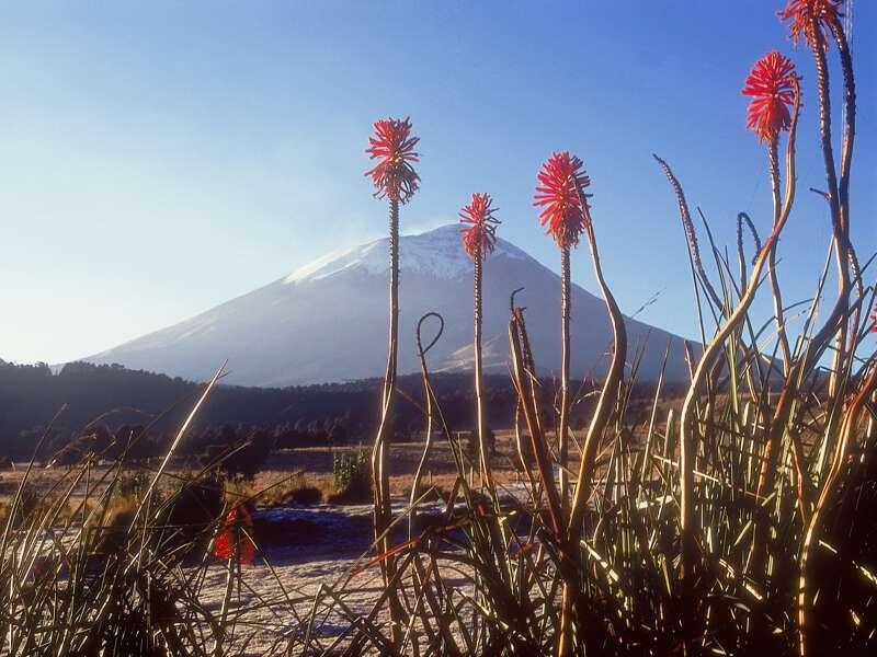 Auf unserer Studienreise fahren auf der Autobahn von Mexiko-Stadt nach Puebla vorbei an Mexikos großen Vulkanen, wie dem Popocatépetl.