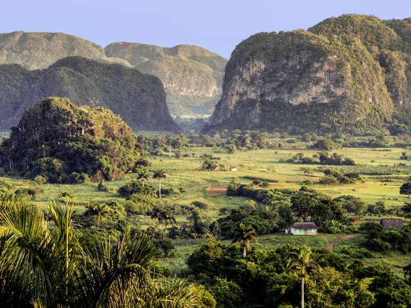 Eine Station der Studiosus-Reise durch ganz Kuba ist das Tal von Viñales mit seinen Kalkfelsen. Und hier wächst auch der vielleicht beste Tabak der Welt.