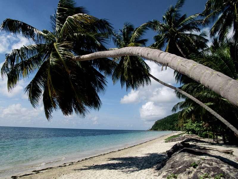 Auf der Insel Caya Ensenachos empfängt uns ein erstklassiges Strandhotel. Zwei Tage weißer Strand, kristallklares Meer und karibisches Flair ¿ so traumhaft endet Ihre umfassende Studienreise durch Kuba.