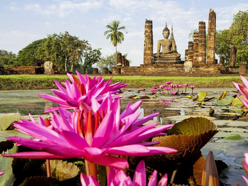 Magisch: die große Buddhastatue, umgeben von Seerosen im Geschichtspark Sukhothai. Auf unserer Studienreise Thailand - die umfassende Reise erfahren wir vor Ort die Geschichte der alten Königsstadt Sukhothai (UNESCO-Welterbe).