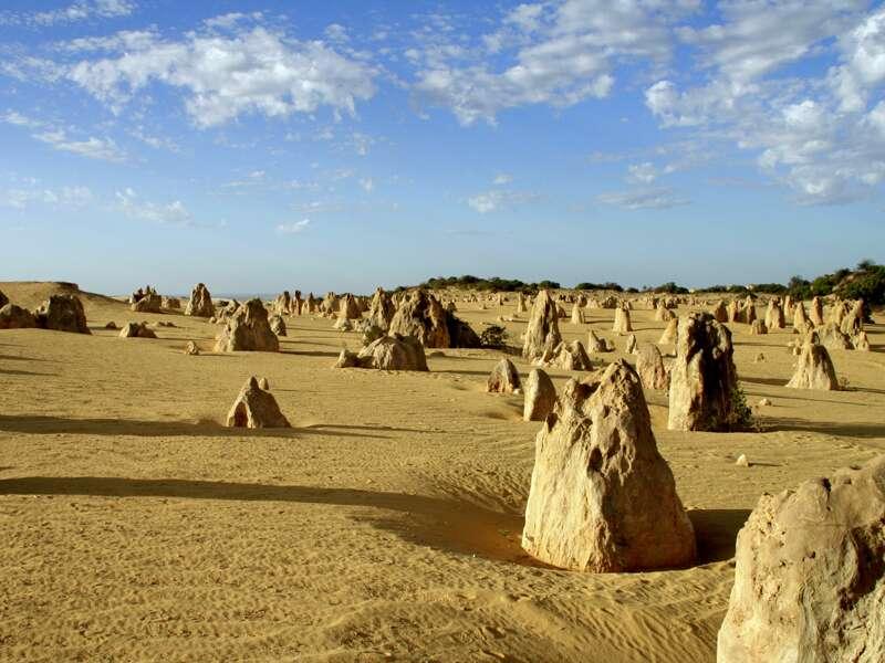 """Oft heißt es auf unserer Studienreise Australien - die Große Australienreise: Vorhang auf für eine überwältigende Naturkulisse! So durchqueren wir endloses Buschland und bestaunen im Nambung-Nationalpark in Westaustralien die Pinnacles - Tausende von bizarren Steinsäulen, die aus dem Sand """"wachsen""""."""