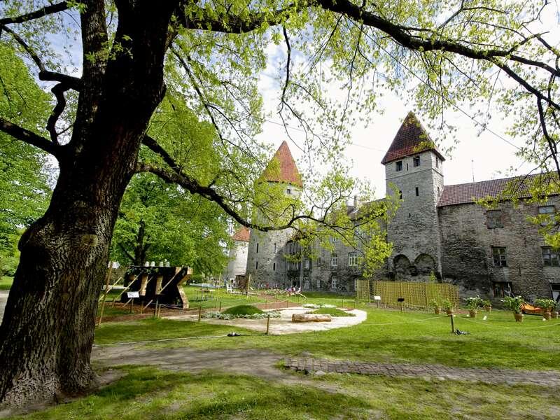 Auf unserer umfassenden Studienreise ins Baltikum besuchen wir in Tallinn den Domberg mit seiner imposanten Burg. Der Domberg gilt als das Wahrzeichen der estnischen Hauptstadt.