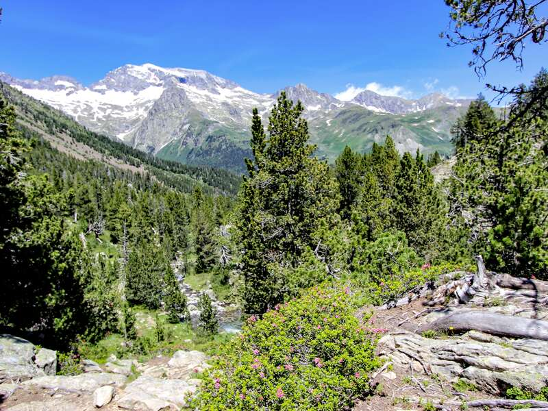 Zu Beginn des Sommers in den Pyrenäen sind die hohen Gipfel noch schneebedeckt. Wir wandern mit Studiosus durch grüne Täler zu blauen Seen und stürzenden Wasserfällen in Frankreich und Spanien.