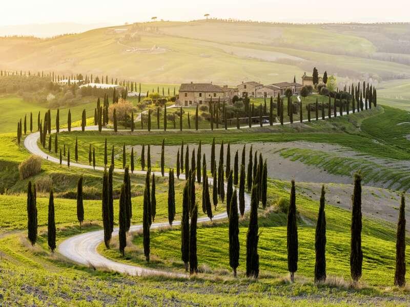 Auf unserer Wander-Studienreise Toskana - Wandern zwischen Pinien und Zypressen erleben Sie auf Wandersfüßen viele typisch toskanische Landschaften, hier etwa das Landschaftsschutzgebiet Val d'Orcia bei Siena.